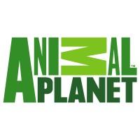 Animal planet logo (.AI, 164.80 Kb)