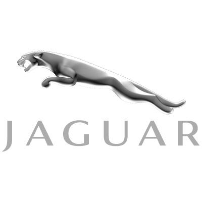 Jaguar 3D logo vector logo