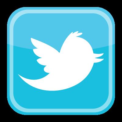 Twitter bird icon logo vector logo