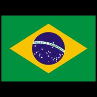 Flag of Brazil logo