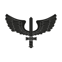 Brazilian Air Force black logo