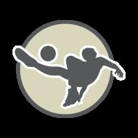Bassano Virtus 55 Soccer Team logo