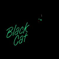 Black Cat Music logo