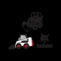 Bobcat  vector