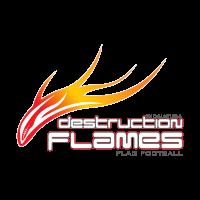 Destruction Flames logo