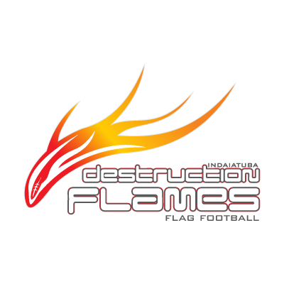Destruction Flames logo vector logo