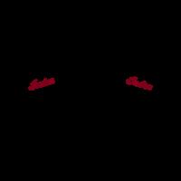 Indian Motorcycles Head logo