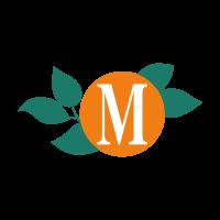 Meausure logo