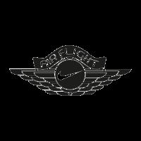 Nike Air Flight logo