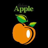 Sanbeam logo