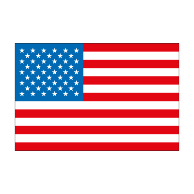 Flag of United State  vector logo