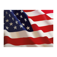 Flag of US  vector