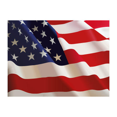 Flag of US  vector logo