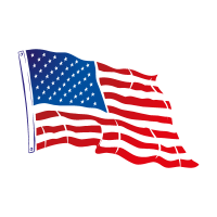 Flag of USA Flying vector