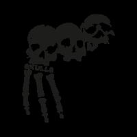 3 skulls vector