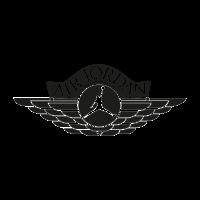 Air Jordan  logo