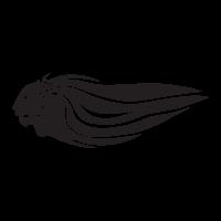 Aprilia lion Variation 01 logo