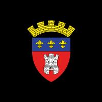 RFC Tournai (Old) logo