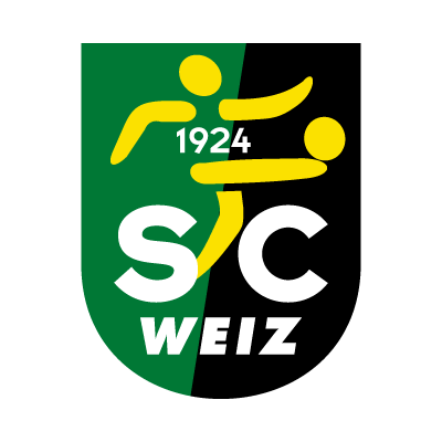 SC Sparkasse Elin Weiz logo vector logo