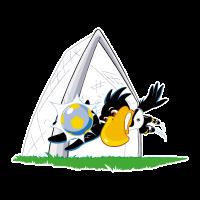 Deutscher FuBball-Bund – Paule (icon) logo