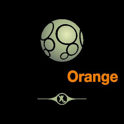 Ligue 2 Orange logo vector logo