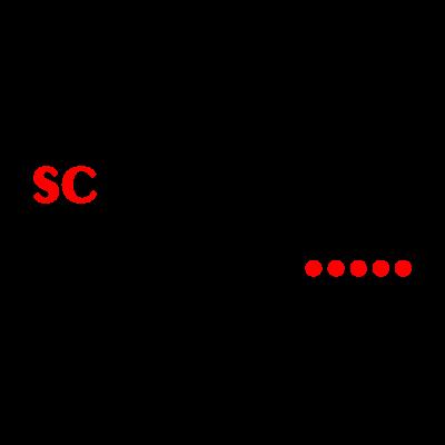 SC Waldgirmes logo vector logo