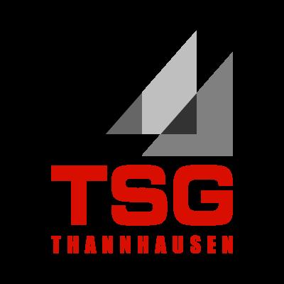 TSG Thannhausen logo vector logo