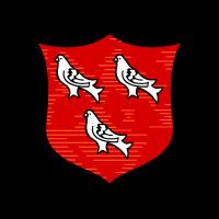 Dundalk FC (Old) logo