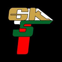 GKS Gornik (2008) logo