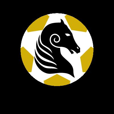 Kildare County FC logo vector logo