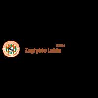 Zaglebie Lubin SA (2008) logo